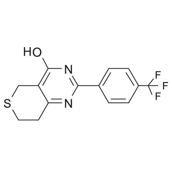 Small Molecule XAV939