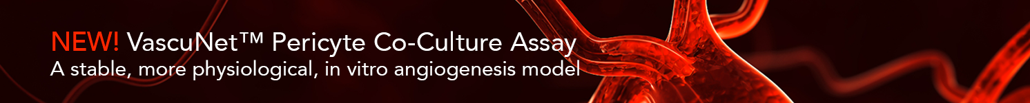 VascuNet Pericyte Co-Culture Assay
