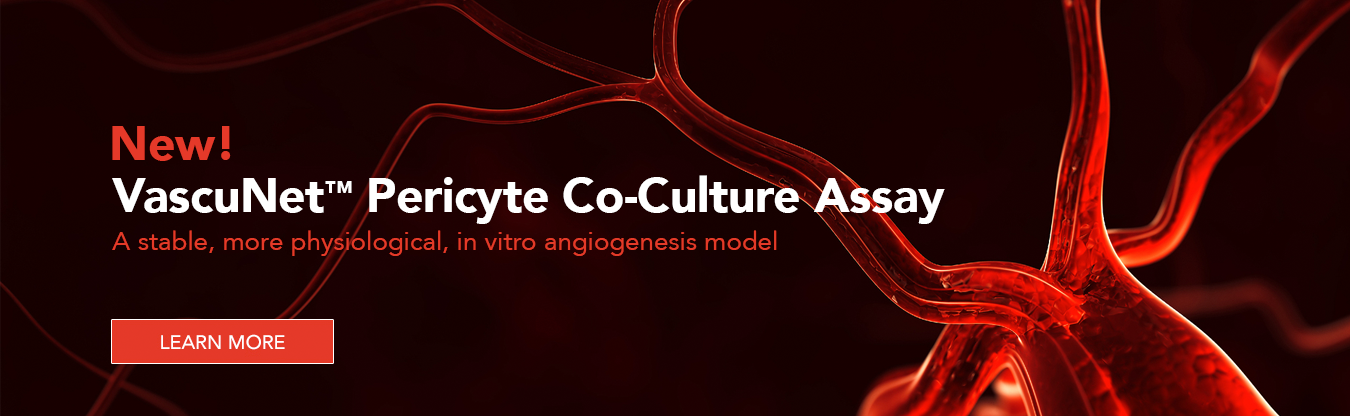 New! VascuNet Pericyte Co-Culture Assay